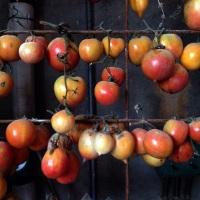 Pa amb tomata